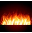 Flame burn background vector image