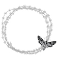 butterfly and barbed wire vector image