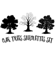 Oak trees black silhouettes vector
