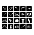 Collection of Sport Equipment Icons on White Backg vector image