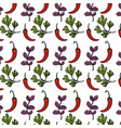herbs and spices plants and organ food background vector image