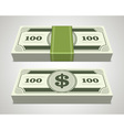 Dollars money in perspective vector image vector image