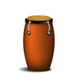 conga percussion music instrument vector image
