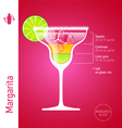 Margarita cocktail vector image