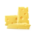 Triangular Sliced Pieces of Swiss Cheese vector image
