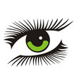 green eye with long lashes vector image
