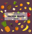 farm fresh fruit poster vector image