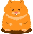 Cute Baby Hamster Isolated vector image