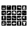 Collection of Sport Accessory Icons vector image