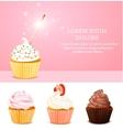 Pink Birthday Card vector image
