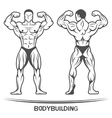 Bodybuilder On isolated background vector image