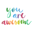 You are awesome calligraphic poster vector image vector image