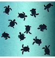 Baby Sea Turtles vector image vector image