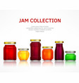 jam collection vector image