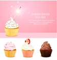 Pink Birthday Card vector image