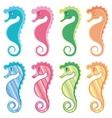 set of seahorses vector image