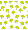 broccoli vegetable healthy seamless pattern vector image