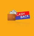 cash back icon vector image