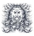 neptune head vector image