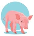 suckling pig vector image