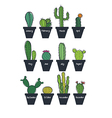 Cute cactus set vector