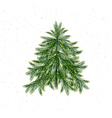 Christmas tree isolated on white vector image vector image