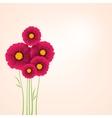 Beautiful flowers Dahlias Element for design vector image