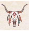 bull skull with feathers vector image