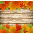 Golden autumn frame vector image vector image