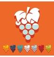 Flat design grapes vector image