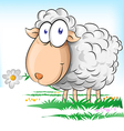 sheep cartoon on background vector image