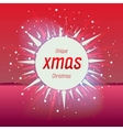 Christmas star on red background vector image vector image