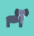 flat icon stylish background cartoon elephant vector image