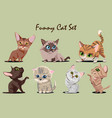 funny kitty set vector image