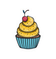 lemon cupcake with cherry vector image