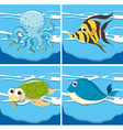 Four different sea animals vector image vector image