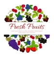 Fresh fruits and berries fruit banner vector image