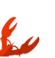 isolated flat lobster on white empty background vector image