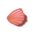 pink seashell underwater creature vector image
