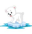 polar bear cartoon vector image
