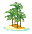 Island and palm trees on a white background vector image vector image