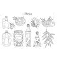 Olive Oil Handdrawn Set vector image
