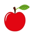 apple fruit fresh icon vector image
