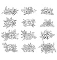 Collection of hand drawn floral compositions vector image