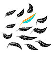 schematic simple icons feathers silhouettes and vector image