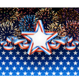 American background with fireworks vector image