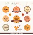 Honey bee labels vector image