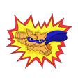 SUPER-CAT vector image