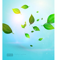 Abstract Leaf Design vector image