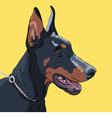 dog Doberman Pinscher vector image vector image